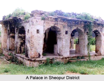 Sheopur District, Madhya Pradesh