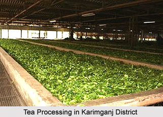 Economy of Karimganj District