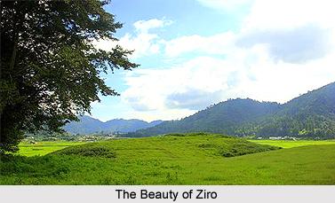 Tourist Places in Ziro, Arunachal Pradesh