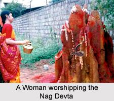 Nagpanchami , Indian Festival