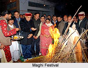 Maghi Festival, Punjab