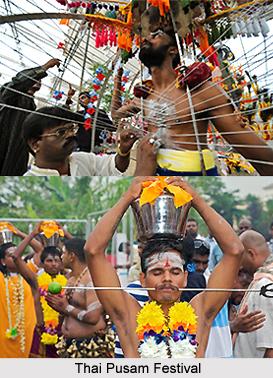 Thai Pusam Festival, Tamil Nadu