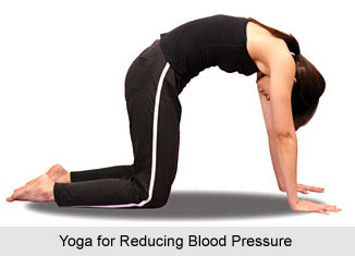 Yoga for Blood Pressure, Yoga and Health