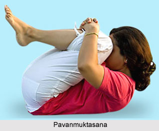 Impact of Yoga on Excretory System