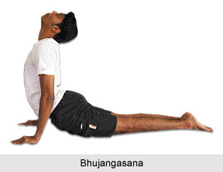 Yoga for Reducing Fat, Yoga and Health