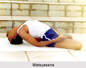 Yoga for Spinal Cord Problems, Yoga and Health