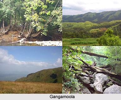 Gangamoola , Karnataka
