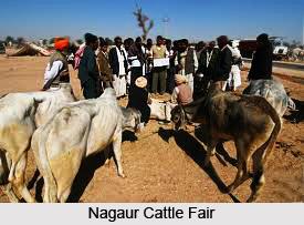 Fairs in Nagaur District, Rajasthan