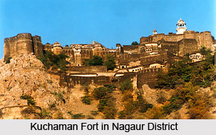 Economy of Nagaur District, Rajasthan