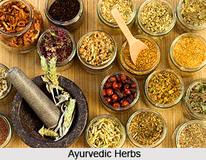 Development of  Ayurveda