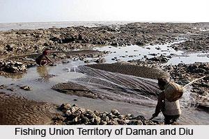 Economy of Daman and Diu