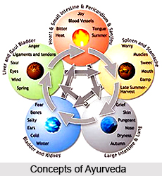 Concepts of Ayurveda