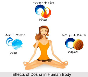 Functions of the Doshas, Ayurveda