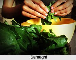 Samagni