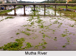 Mutha River, Indian River