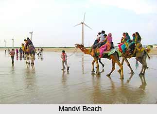 Transport & Accomodation in Kutch
