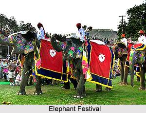 Festivals of Jaipur, Indian Regional Festivals, Indian Festivals