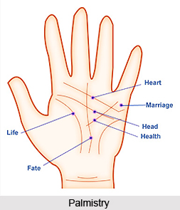 Features of Palmistry