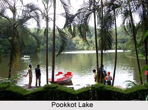 Pookkot Lake, Wayanad, Kerala