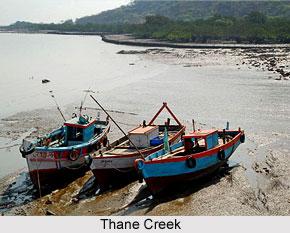 Thane Creek, Maharashtra