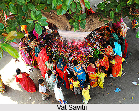 Vat Savitri , Indian Festival