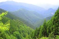 Dhangi Hills