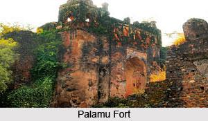 History of Palamu District