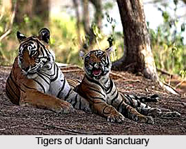 Udanti Wildlife Sanctuary, Chhattisgarh