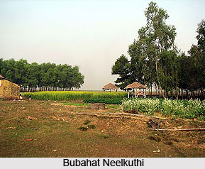 Bubahat Neelkuthi, Birbhum District