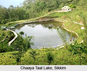 Hee Bermiok, Sikkim