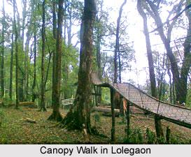 Lolegaon, Darjeeling, West Bengal