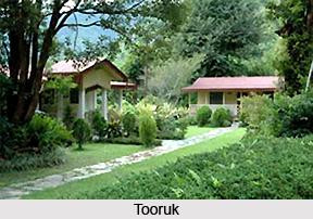 Tooruk, Sikkim, West Bengal