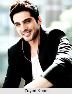 Zayed Khan, Indian Actor