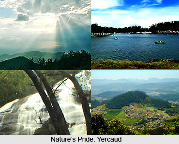Places to see in Yercaud, Tamil Nadu