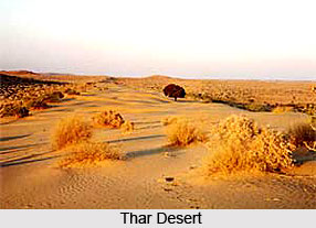 Deserts and Xeric Shrub-Lands in India