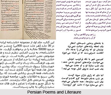 Influence of Indo-Persian Culture in Urdu Literature