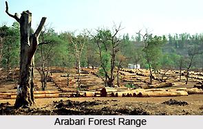 Arabari Forest Range, West Bengal