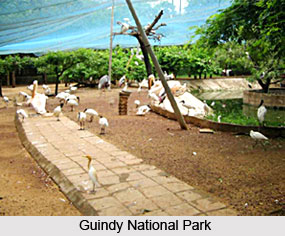 Gardens and Parks of Tamil Nadu