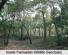 Parmadan Wildlife Sanctuary, West Bengal