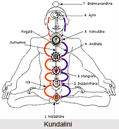 Seven Body Approach to Growth in Kundalini