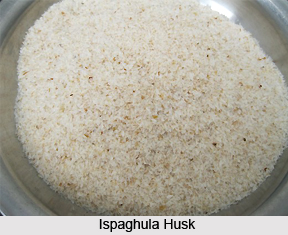 Ispaghula, Indian Herb