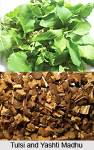 Respiratory Diseases cured by Tulsi