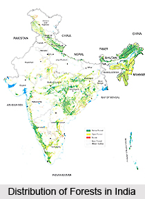 Distribution of Forests in India