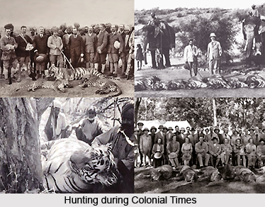 Hunting in India