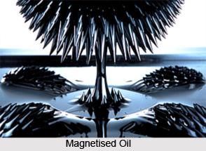 Magnetized Oils