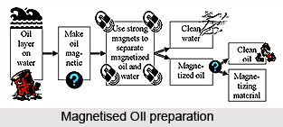 Magnetized Oils