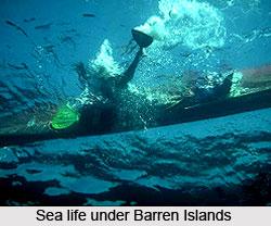Barren Islands, Indian Islands