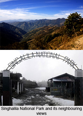 Singhalila National Park, Tourist Places in Darjeeling, West Bengal