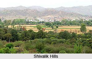 Altitudinal Zones of Vegetation in Mountainous Regions of India