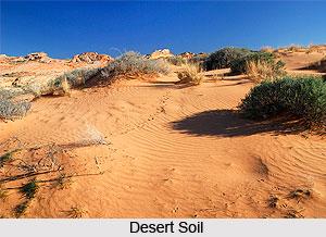 Desert Soils in India
